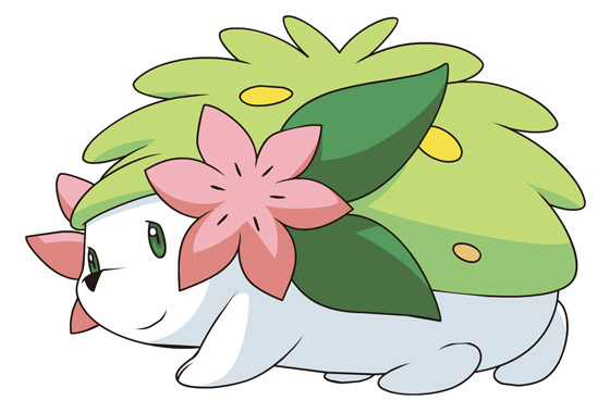 shaymin-real