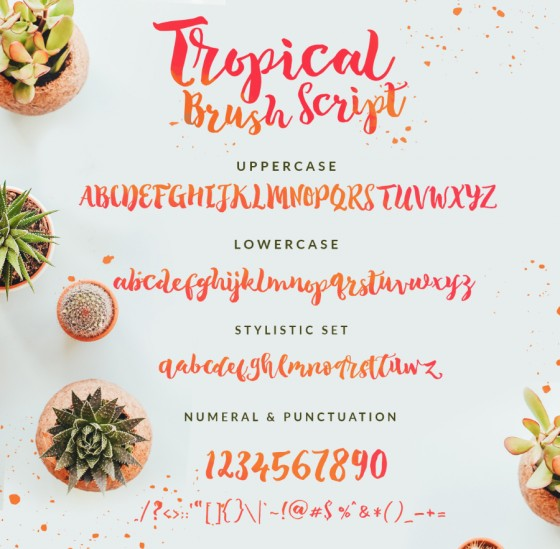 Tropical-Brush-Script-Free-Demo-prev03