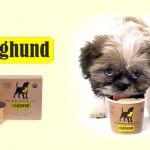 Frozen Yogurt para cães