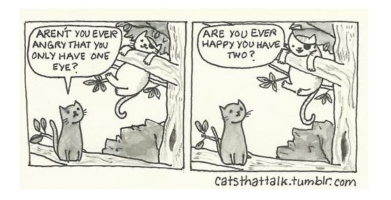 cats that talk