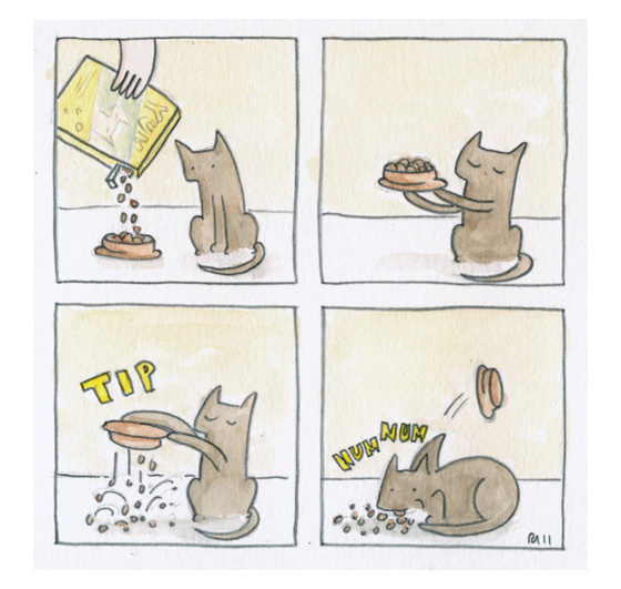 Cutedrop Os Gatos Mais Fofos Da Internet