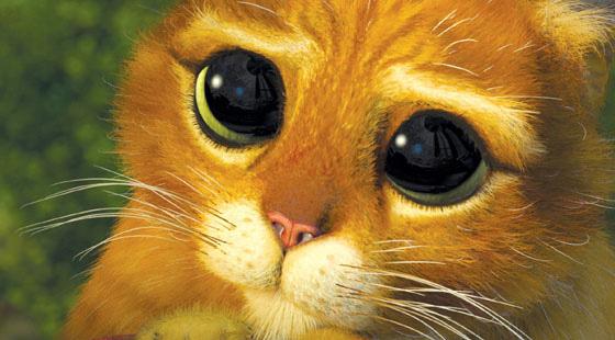 gato de botas shrek