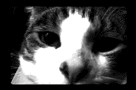1 bit camera