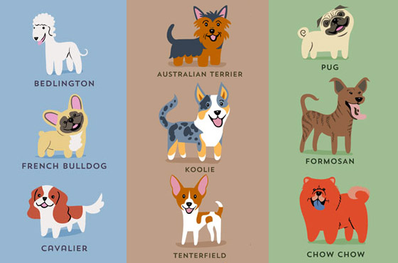 dogs-destaque