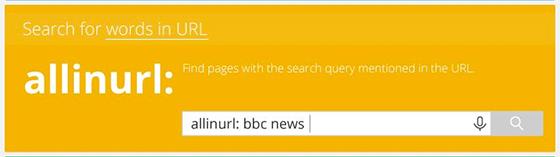 google-search7