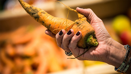 intermarche-cenoura