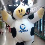 A vaquinha louca que divulgou o seu leite pelo mundo dançando