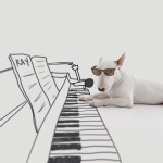 O mundo ilustrado de Jimmy, o Bull Terrier brasileiro que bomba no Instagram