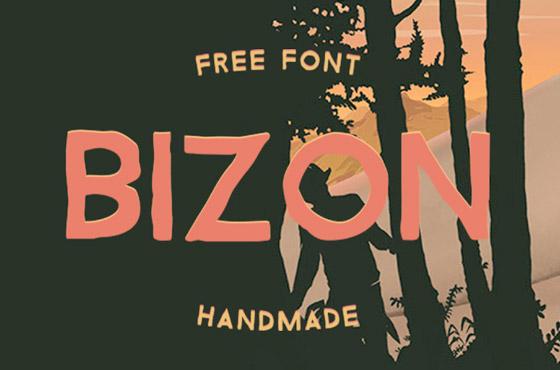 handmade-bizon1