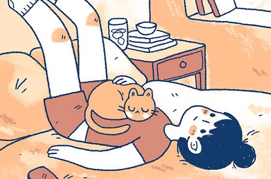 gatodestaque