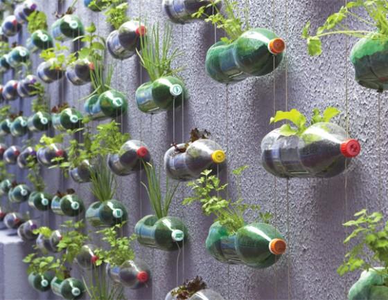 Horta vertical com garrafas PET